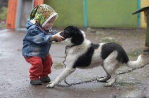Cane cantena bambino.047