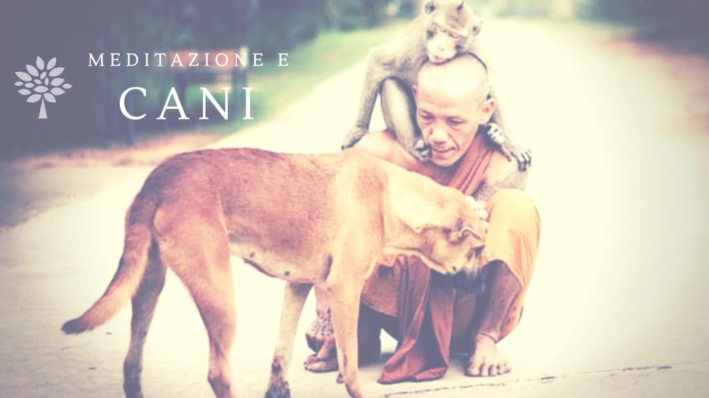 Monaco con un cane e una scimmia