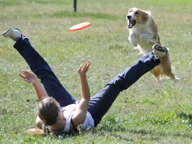 Allunga la tua vita, ricaricati… grazie al tuo cane!