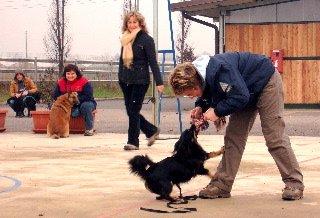 Nella foto Eleonora Bizzozero, docente ThinkDog e Caterina Bettella che gioca al tira e molla col suo cane durante il corso per educatori cinofili di Verdello 2006-2007.