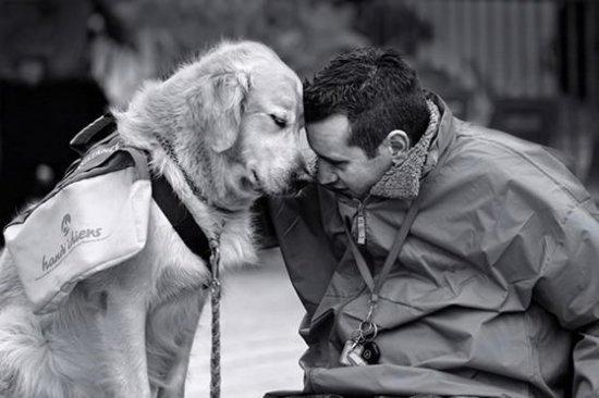 relazione uomo - cane