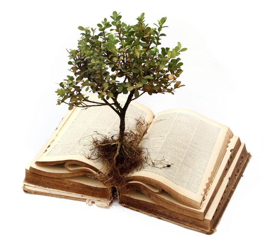 knowledge conoscenza