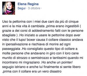 Testimonianza FB