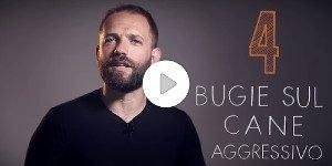 4bugiesuicaniaggressivi