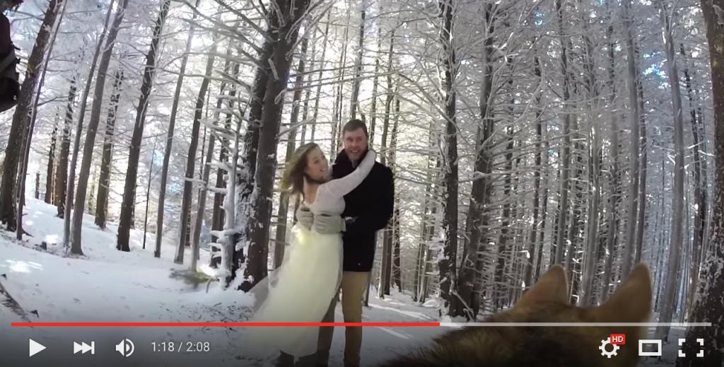 cane filma matrimonio