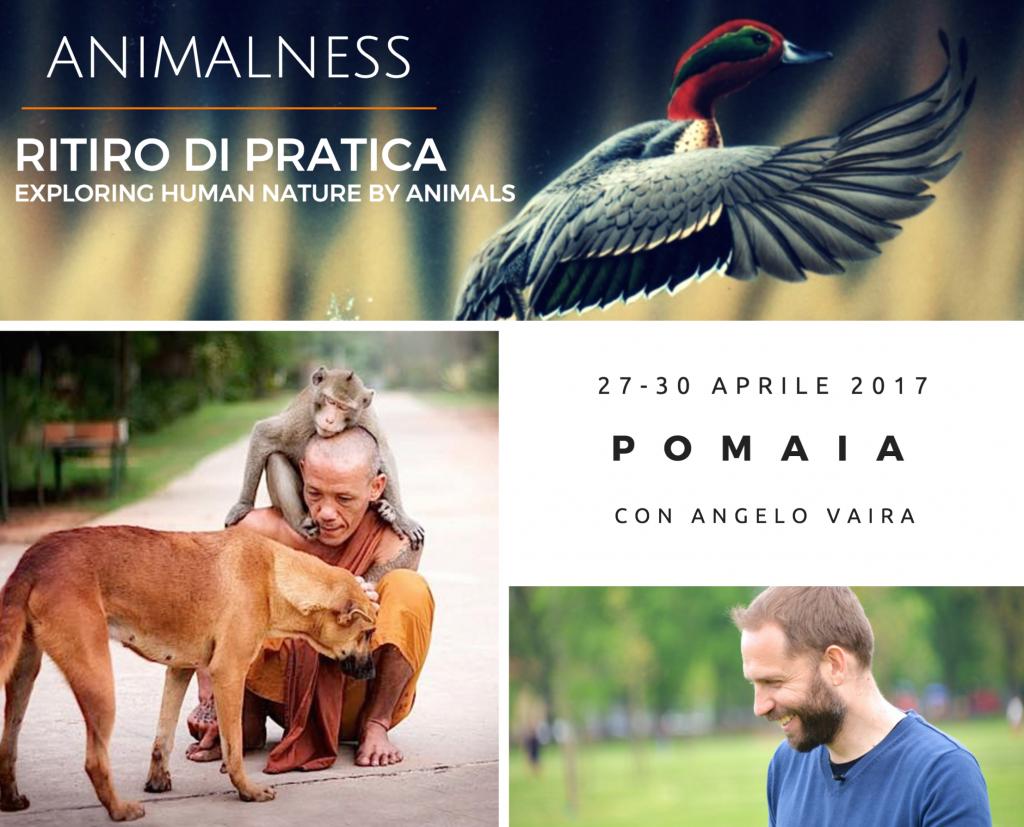 Animalness Angelo Vaira