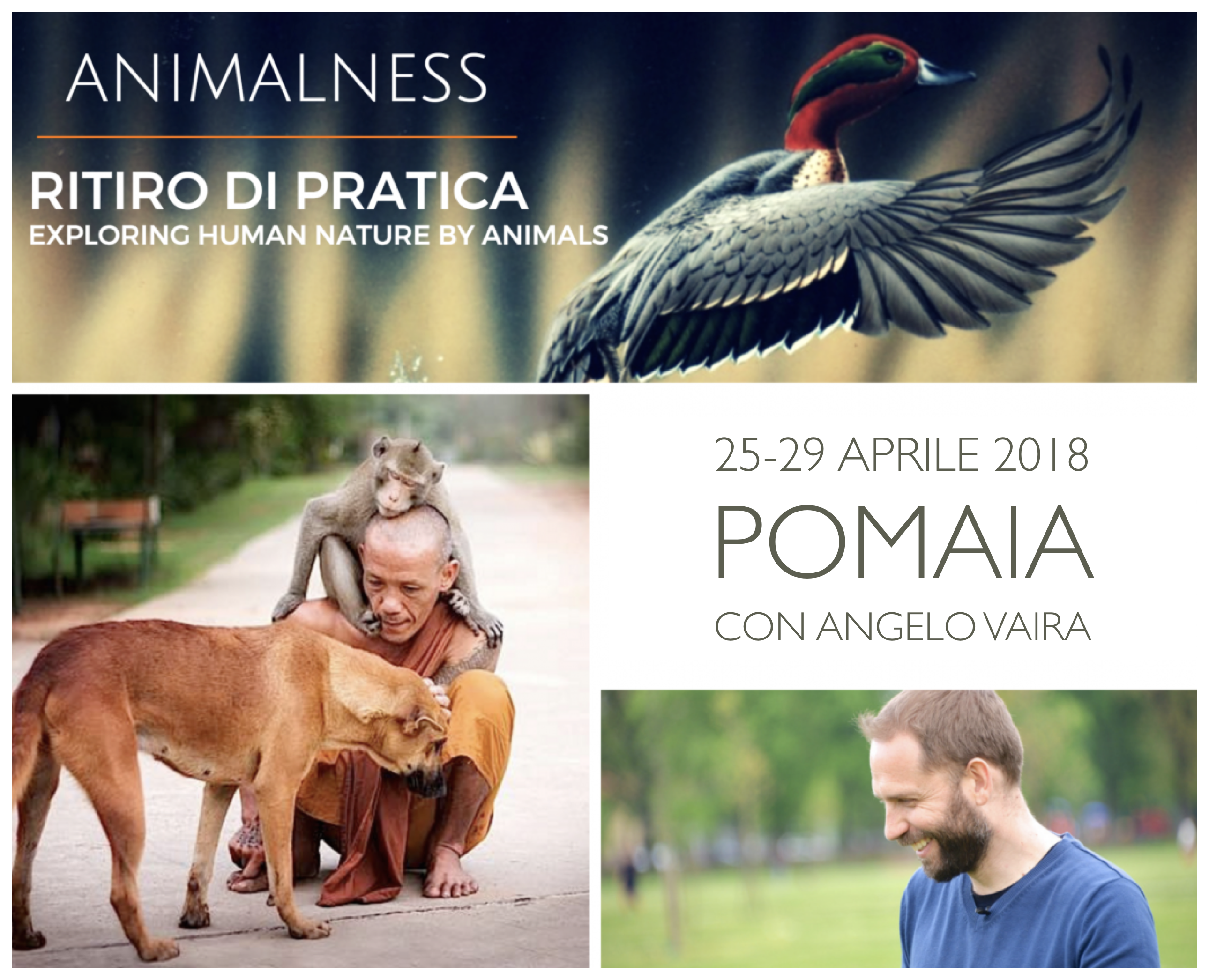Ritiro Animalness con Angelo Vaira a Pomaia