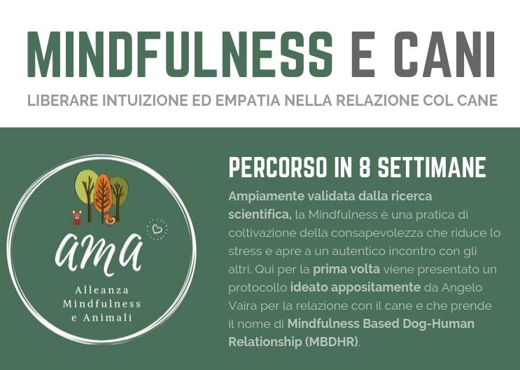 Mindfulness e Cani con Angelo Vaira