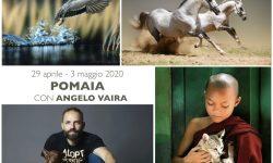 Comunicazioni-Animalness.001-1